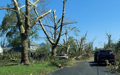 Tornadoes in the Northeast